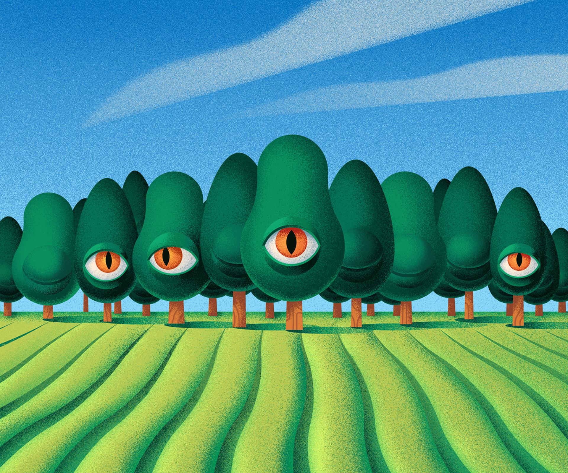 Fields of Eye